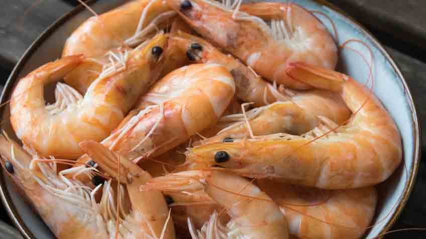 what are the benefits of eating shrimp